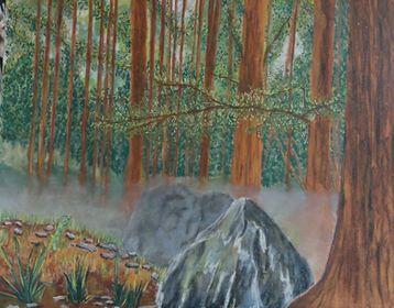 Brume_en_forêt